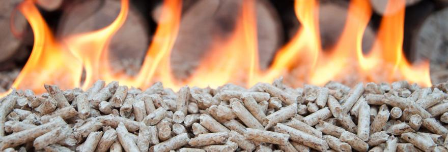 granulés en bois