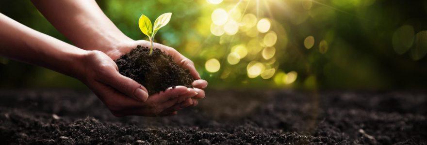 Actualités et prises de conscience sur l'écologie